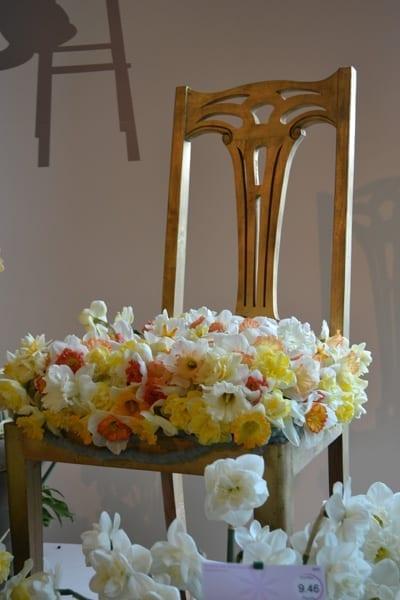 Keukenhof Daffodil Show1